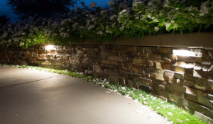 Landscape Lighting_2